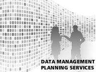 Image of silhouetted coup in front of Data Manangement Planning Servicesdata wall with